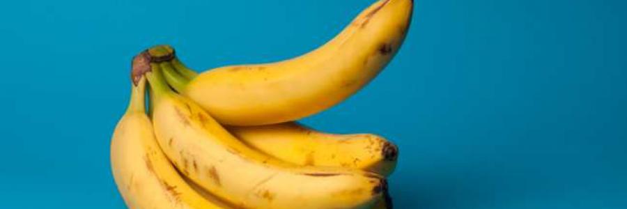 Kodėl vyrai rytais patiria erekciją?